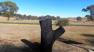 black stump testing